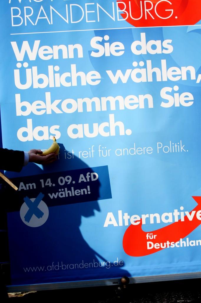 Es ist Zeit für die Banane. DIE PARTEI nutzte die AfD-Veranstaltung zu eigener Wahlversprechen. (Foto: pressedienst ffo)