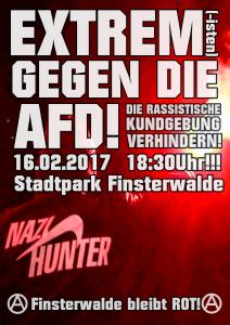 Flyer für Aktionen gegen die AfD-Kundgebung am 16.02. in Finsterwalde